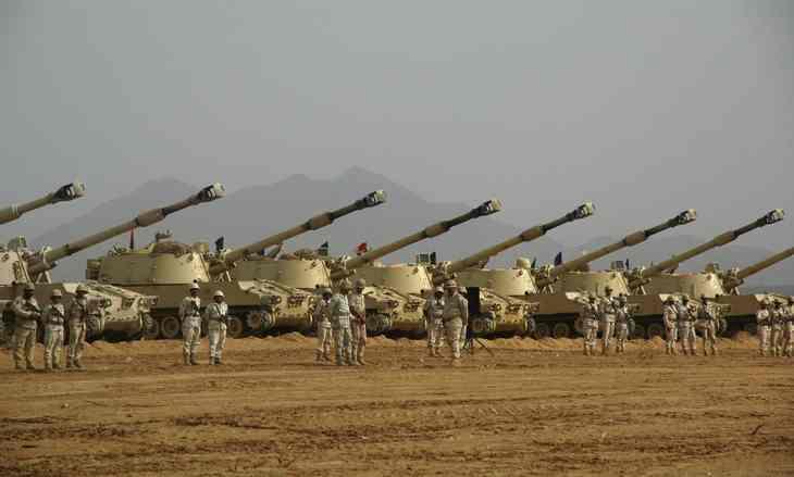 Элитная самоходно-артиллерийская рота ВС СА