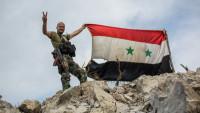 Атаман заявил о столкновениях казаков с турецкими войсками в Сирии