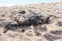 В Иране разбился истребитель FT-7 военно-воздушных сил