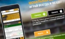 мобильное приложение на телефон и андроид